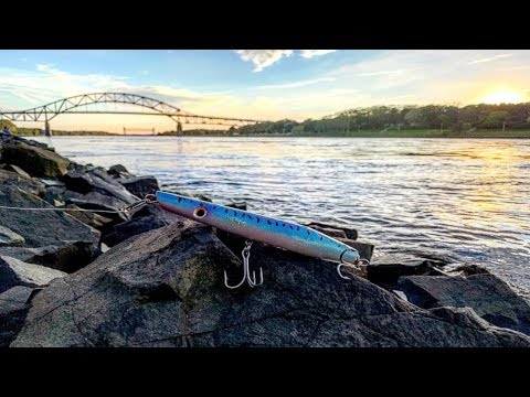 Striped Bass On Pencil Poppers At The Cape Cod Canal ! - Day 2