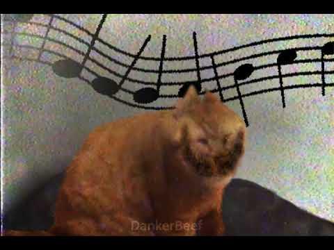 Cat Tunes