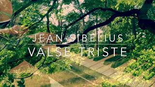 Valse Triste - Jean Sibelius for theremin and piano