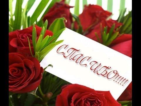 Анастасия Волынец: Спасибо за тот прекрасный день, мои хорошие