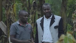 papa-sava-ep67-gapita-by-niyitegeka-gratien-rwandan-comedy