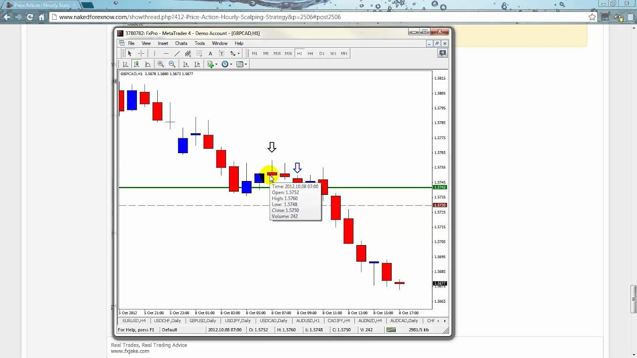 1 hour forex scalping