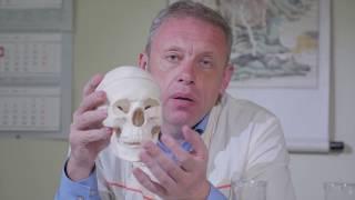 Профессор Дмитрий Мохов : Что такое остеопатия и как она работает