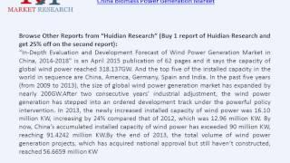 China Biomass Power Generation Market