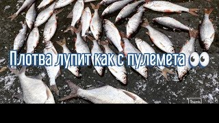 Рыбалка на речке Супой Плотва клюёт как с пулемёта Зимняя рыбалка