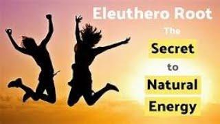 eleutherococcus erekcióra)