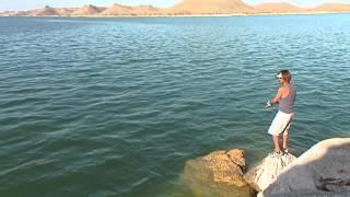 #031 ナイルの賜物・エジプト 豊かなるナセル湖のナイルパーチを追う
