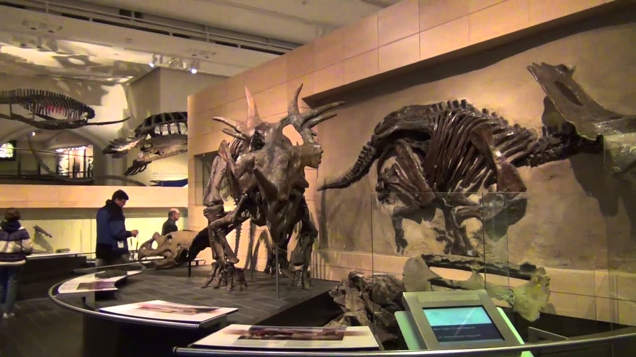 Museum Of Nature Canada