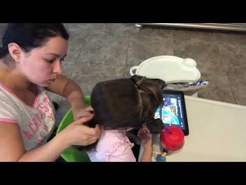Peinado Para Ninas Pequenas Peinado Nina De La Flor Painado De