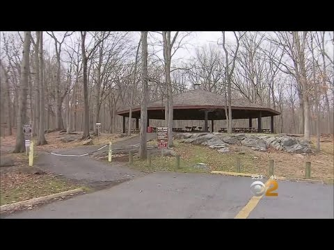 Safety Concerns In Westchester County Parks