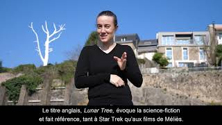 Lunar tree / Mrzyk & Moriceau / Vidéo LSF