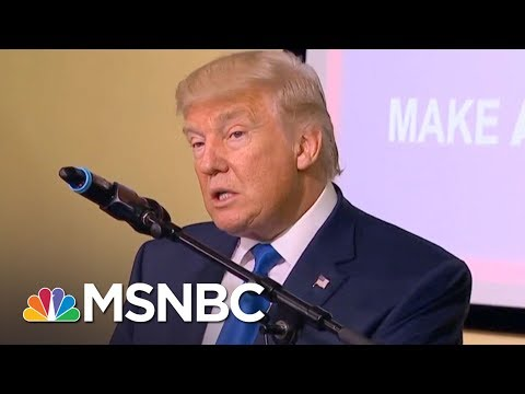 President Donald Trump Immigration Policy Distinguished By Fear And Cruelty | Rachel Maddow | MSNBC