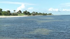 Beaches of Tampa