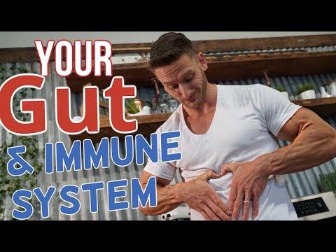 Probiotics | Boost Immunity | Prevent Sickness– Thomas DeLauer