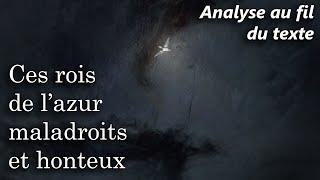 Baudelaire, Les Fleurs du Mal - L'Albatros (commentaire analyse version récente)