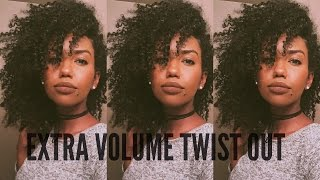 defined twist out w volume on natural hair