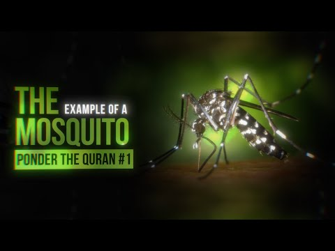 The example of the Mosquito - PONDER THE QURAN #1