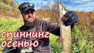Оставил все маленькие приманки дома и отправился на рыбалку. Спиннинг осенью.