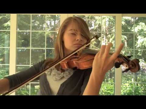 Final Fantasy IX Beatrix's Theme (Rose of May) Violin