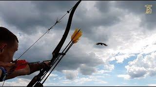 Охота на фазана с луком | Охота с легавой
