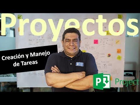 Creación y Manejo de Tareas en Microsoft Project