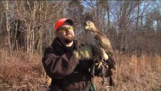 Indiana Falconers Association