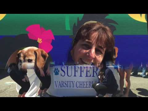 Video: Sights and Sounds From Suffern Street Fair