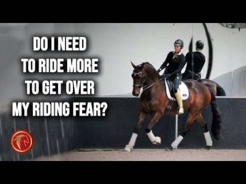 Do I need to ride more to get over my riding fear? (FearLESS Friday Ep72)