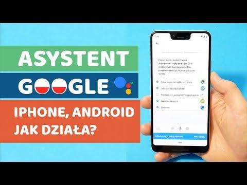 Asystent Google iPhone, Android-  funkcje, działanie, jak włączyć?