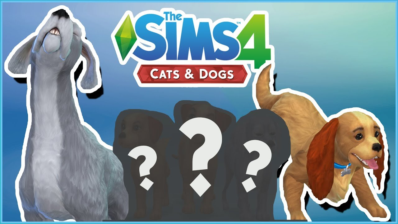 Lady And The Tramp S Puppy Surprises Sims 4 Cats Dogs Youtube