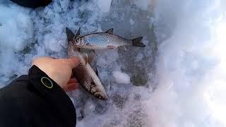 Рыбалка на реке Белой Белорецкий район
