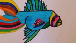 How to draw a fish - Cute fish drawing (HD)