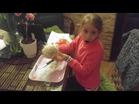Hogyan együnk pomelo-t