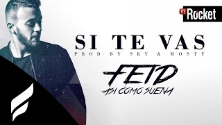 Feid - Si Te Vas l Video Lyric