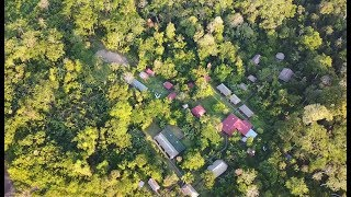 Adventures in the Amazon Jungle | Are you brave enough?