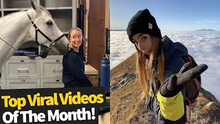 Top 50 Best Viral Videos Of The Month - March 2020