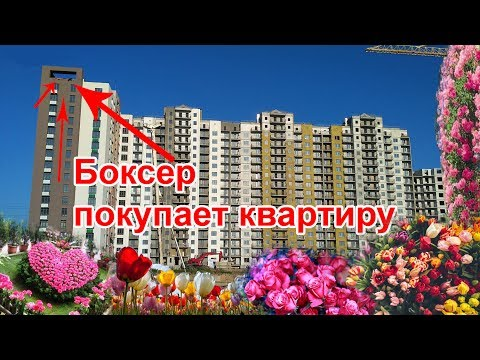 Об утверждении Правил благоустройства территории города