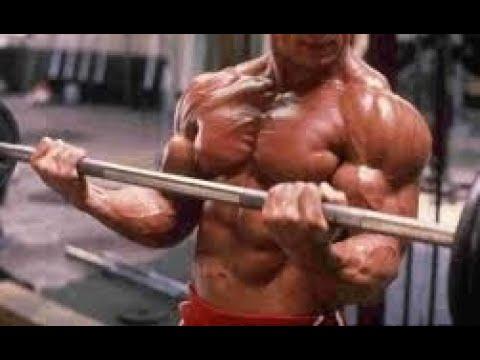 Ejercicios para los tríceps. Entrenadora personal en Madrid. Susana Alonso Fitness