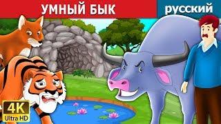 УМНЫЙ БЫК   сказки на ночь   русский сказки