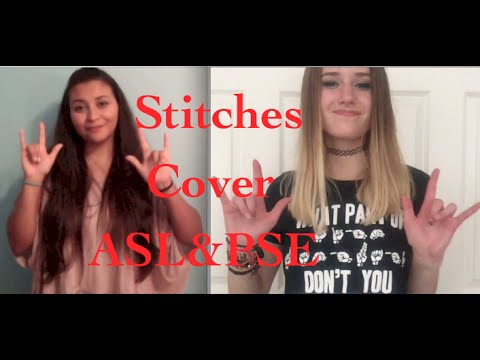 Shawn Mendes -Stitches ASL & PSE Cover! (Feat. TheDailySign)
