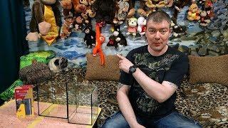 Сколько рыбок можно запустить в аквариум? Часть1 - Аквариумы от 5 до 40 литров.