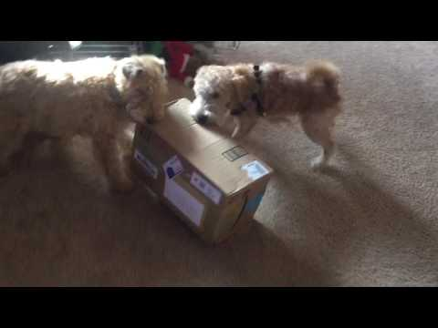 Tug-A-Package