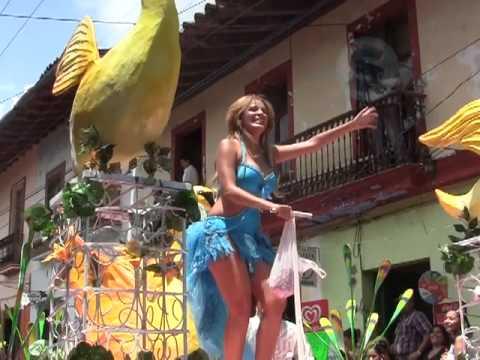 Venta De Carros >> Carnaval de Naolinco - YouTube