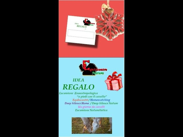 Speciale Natale!!!