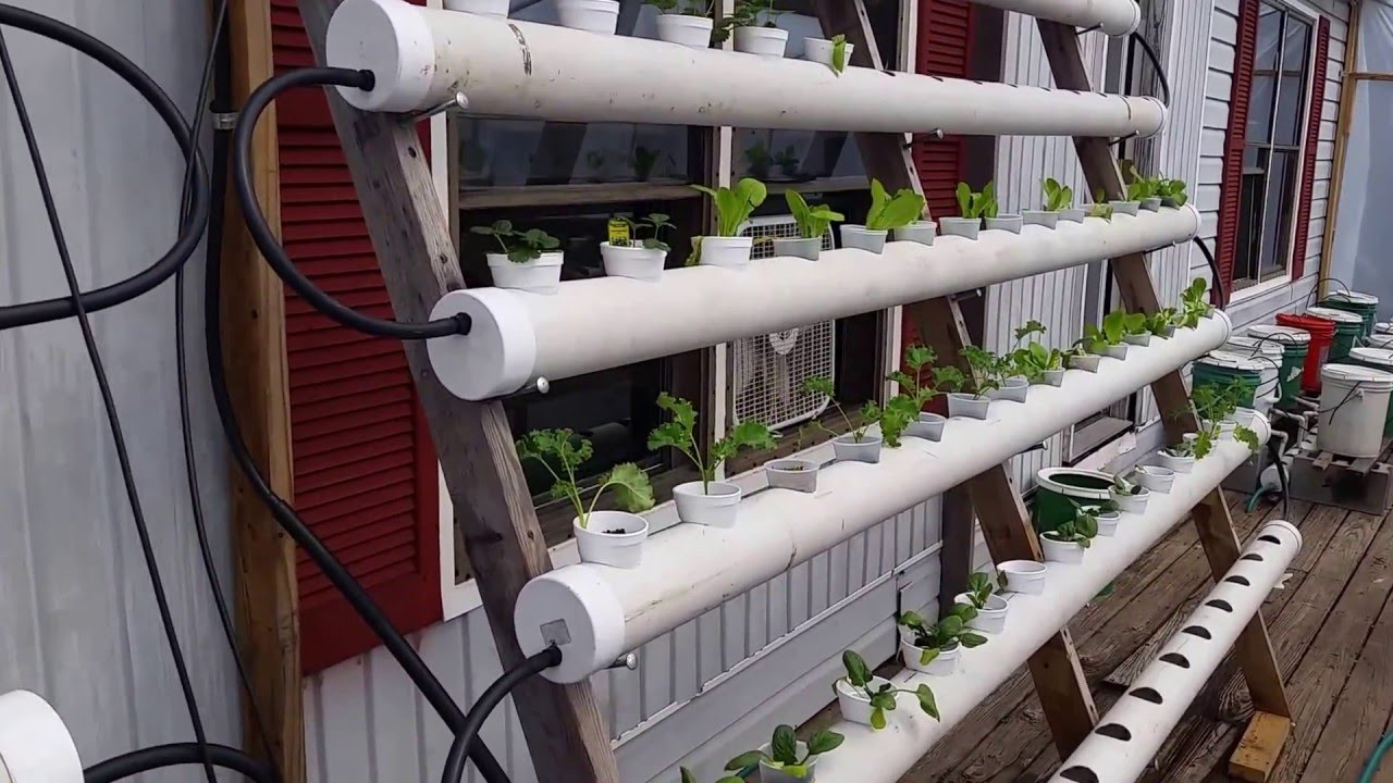 How To Build A Pvc Pipe Hydroponic System