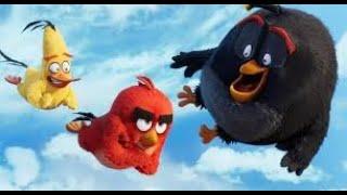 Angry bird 3-9-2020