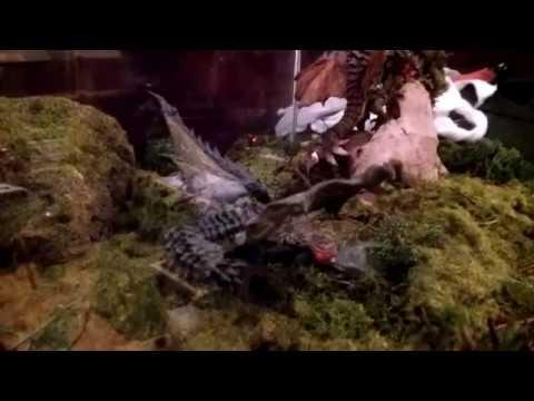 Monster Hunter Diorama by Fachgestörte (Benawi)
