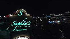 Las Vegas Guide to Adult Entertainment - What You Should Know