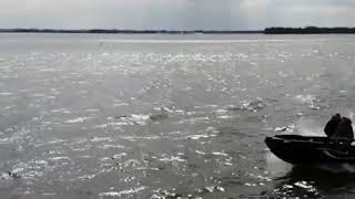 Orka Whale 475 Harderwijk 40 HP