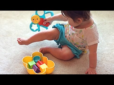 Fisher Price Butterfly Shape Sorter Toy Review